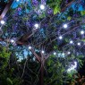 Girlianda balta su LED lemputėmis 50 m 50 lempučių