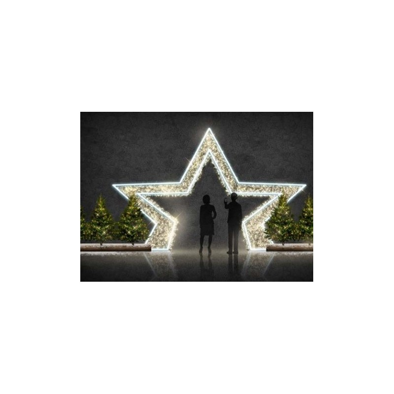 3D vartai STAR 4,5 x 3 m