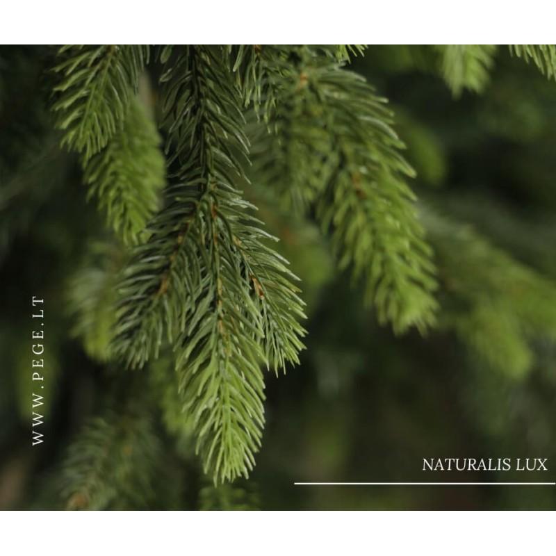 Dirbtinė eglutė NATURALIS LUX 225 cm