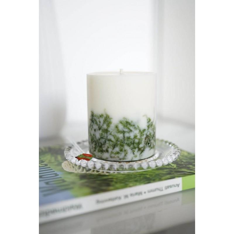 NATURA Naturali kvapnioji žvakė ŠVARCVALDAS didelė