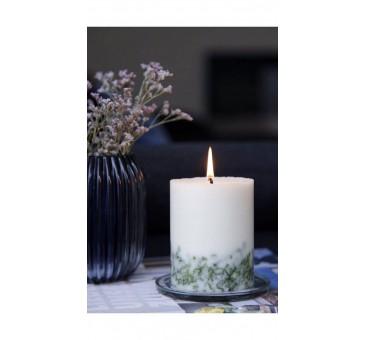 Sojų vaško kvapnioji žvakė NATURA pušies kvapo 280g