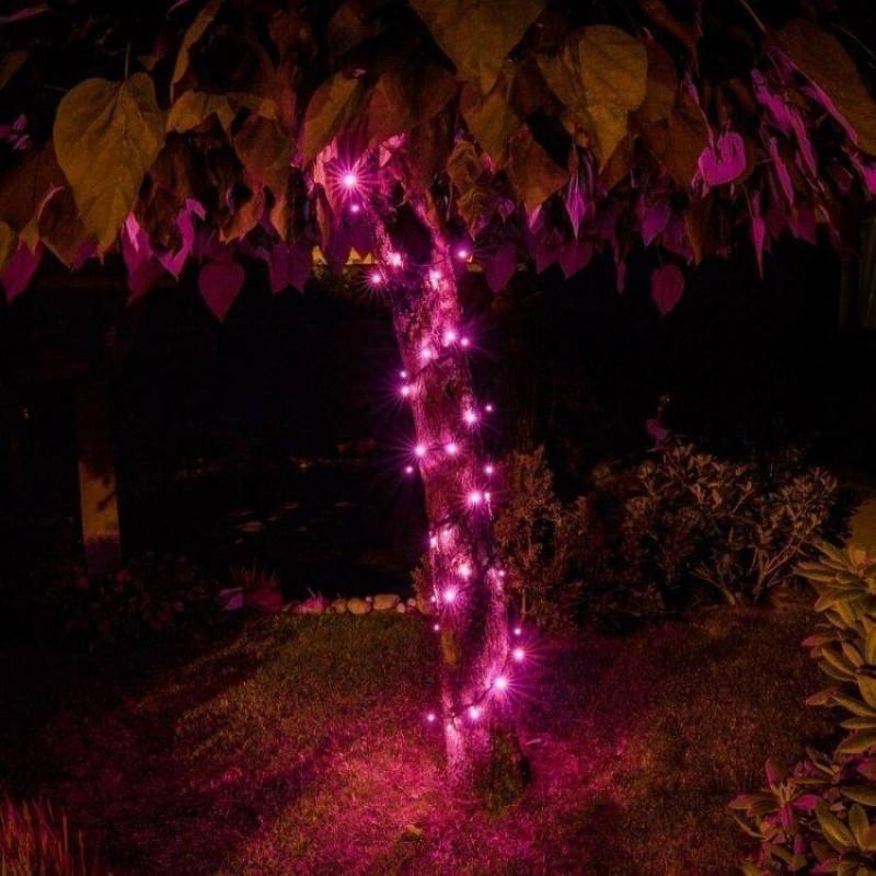 LED girlianda 5m, 50 diodų, rožinė, IP44
