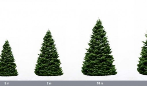 Kiek metrų girliandų reikia puošiant kalėdines eglutes
